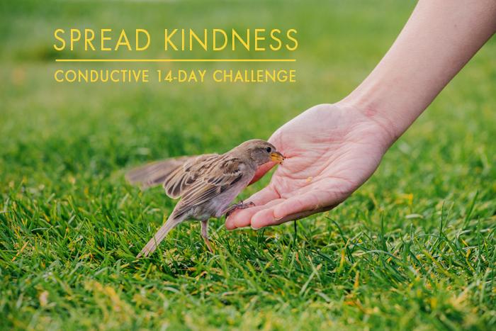 Kindness Spring Office Challenge